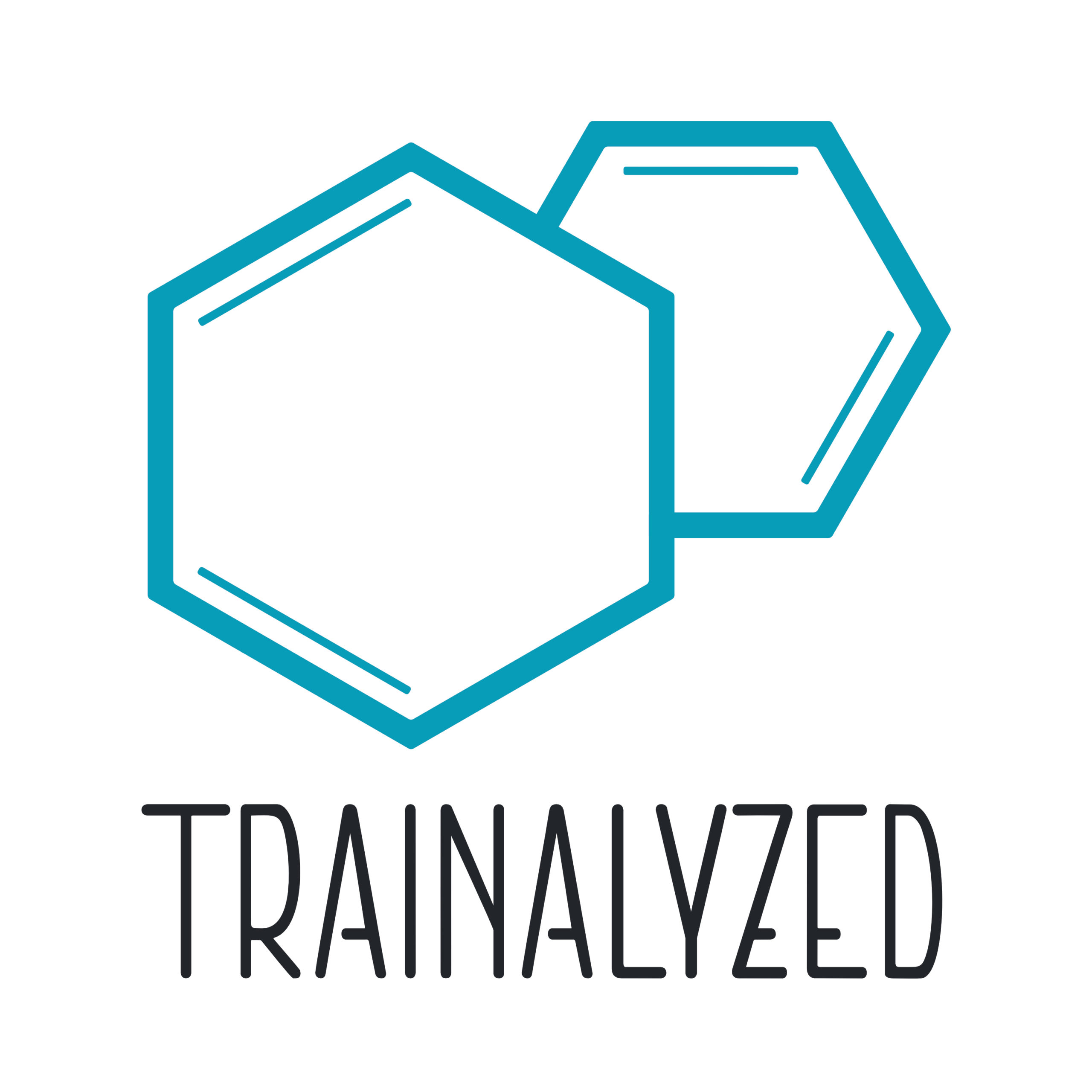 Logo Trainalyzed